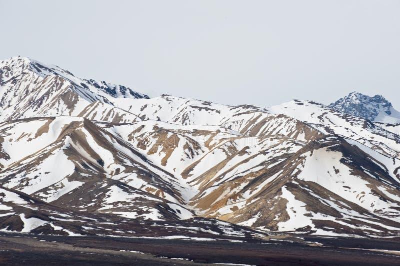 Denali National Park stock image