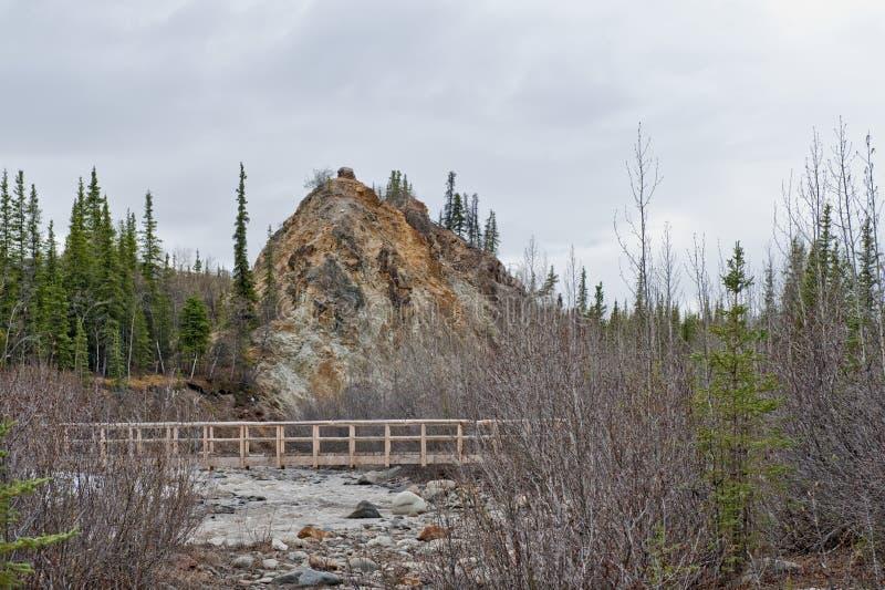 Denali National Park stock images