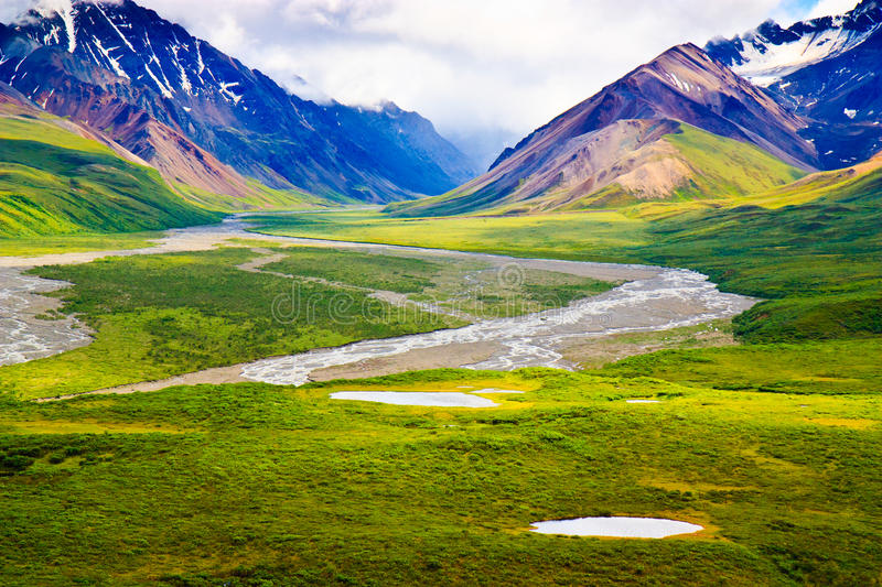 Download Denali National Park stock image. Image of majestic, painting - 20188837