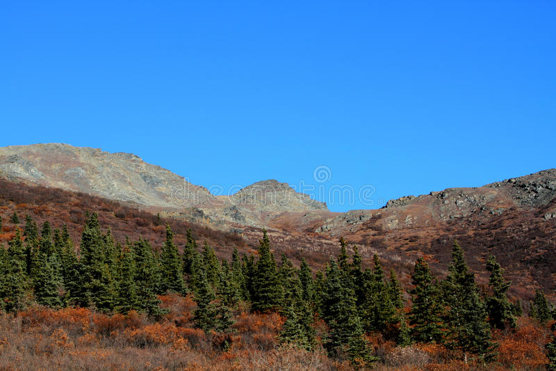 Download Denali National Park stock image. Image of blue, mountain - 23052769