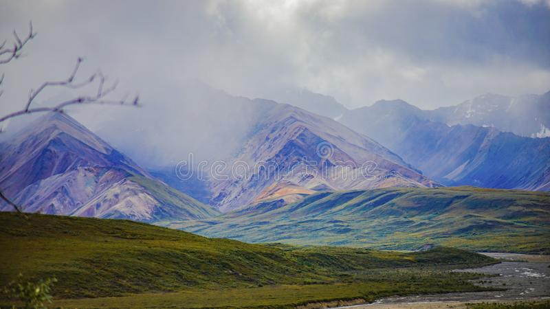 Denali national park, Alaska September royalty free stock images