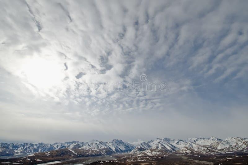 Denali Nationalpark stockbilder