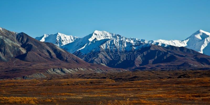 Denali nationalpark i höst arkivbild