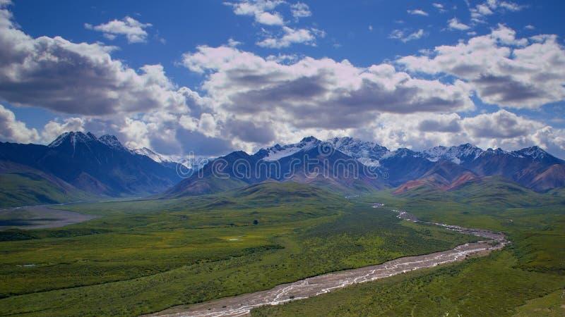 Denali nationalpark och sylt arkivbilder