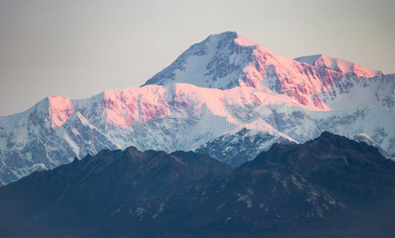 Denali område Mt McKinley Alaska Nordamerika royaltyfri foto