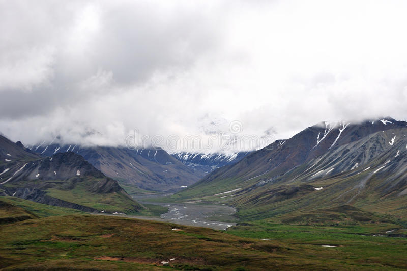 Denali park narodowy obraz stock