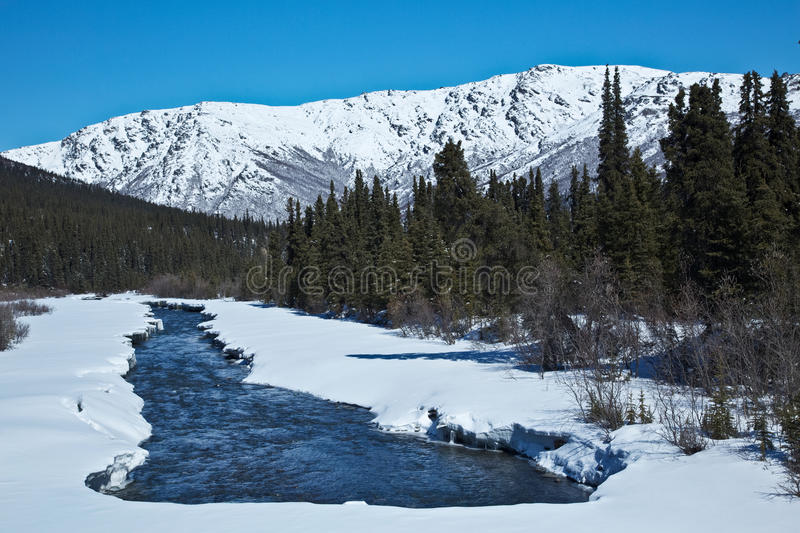 Denali's Sanctuary River royalty free stock photos
