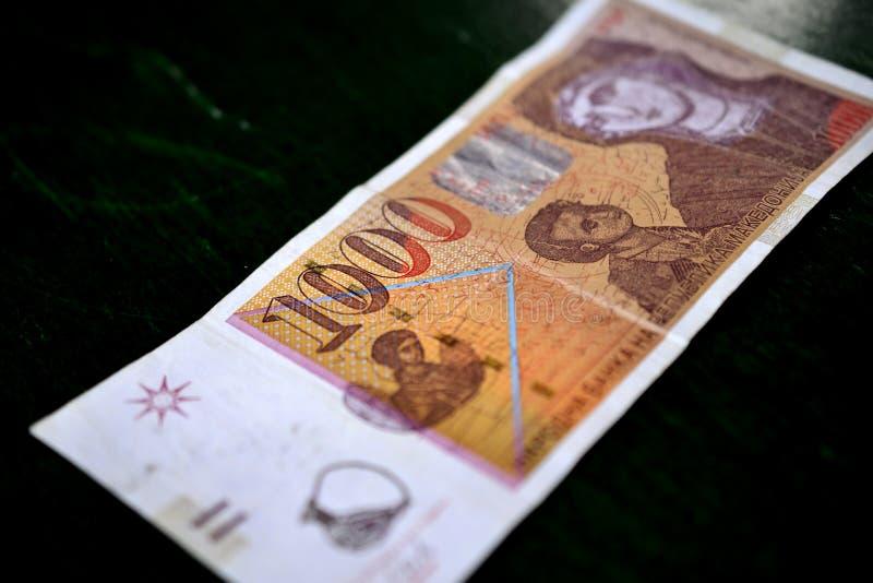 denaru macedonian curency, banknot zdjęcie royalty free