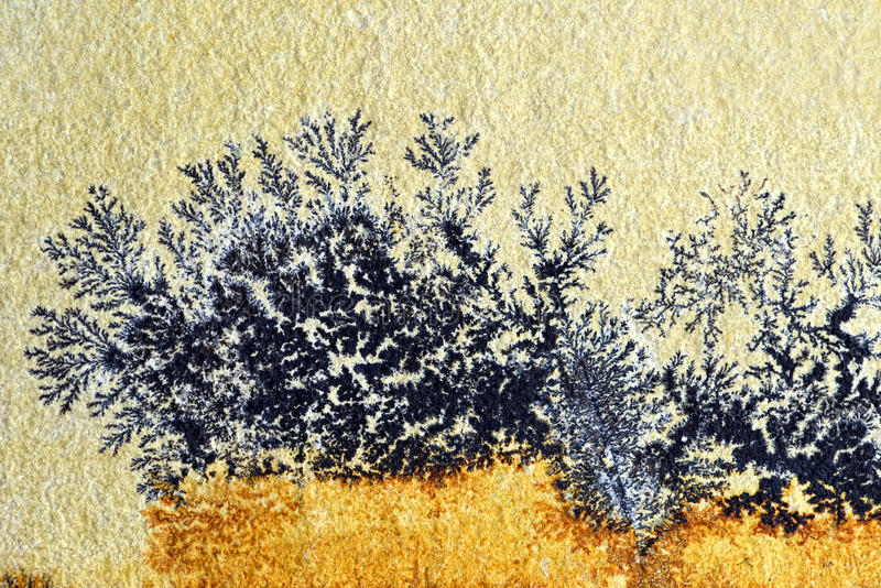 A dendrite na rocha da pedra calcária de solnhofen fotografia de stock royalty free