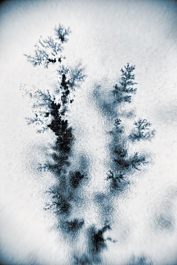 Dendritekristallfilial royaltyfria bilder