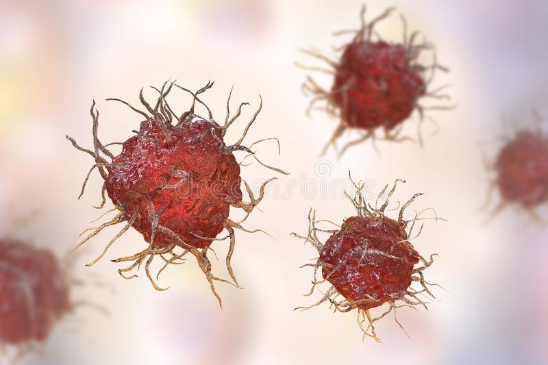 Dendritic cell, antigen-presenting immune cell royalty free illustration