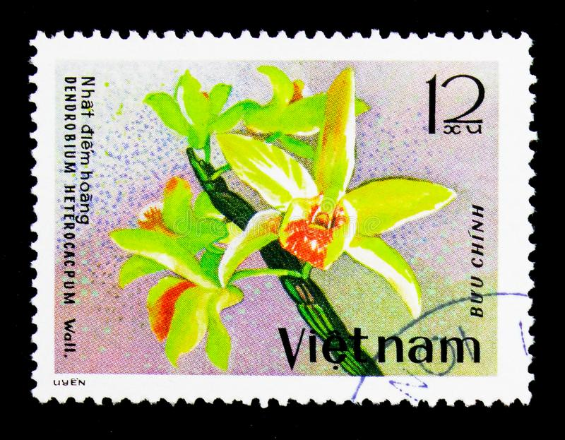 Dendrobium heterocarpum, Orchids serie, circa 1979. MOSCOW, RUSSIA - NOVEMBER 26, 2017: A stamp printed in Vietnam shows Dendrobium heterocarpum, Orchids serie stock images