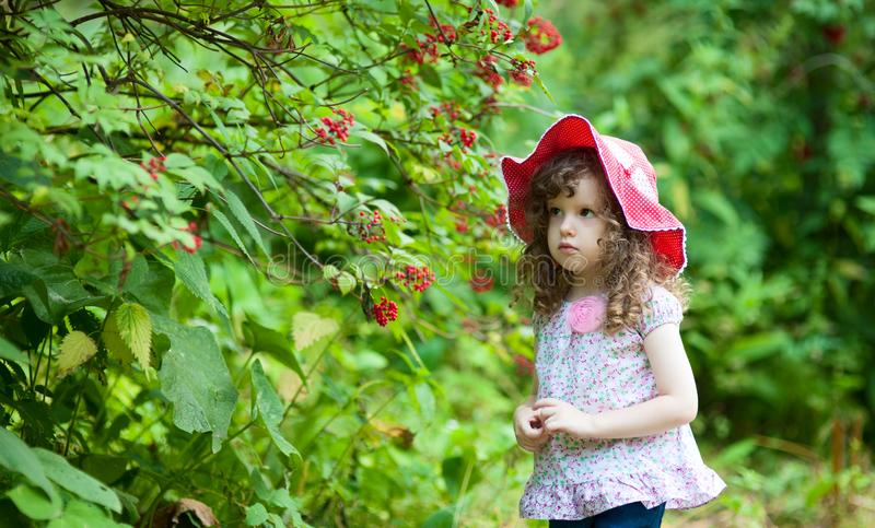 dengamla lockiga flickan i röd hatt som går i sommar, parkerar fotografering för bildbyråer
