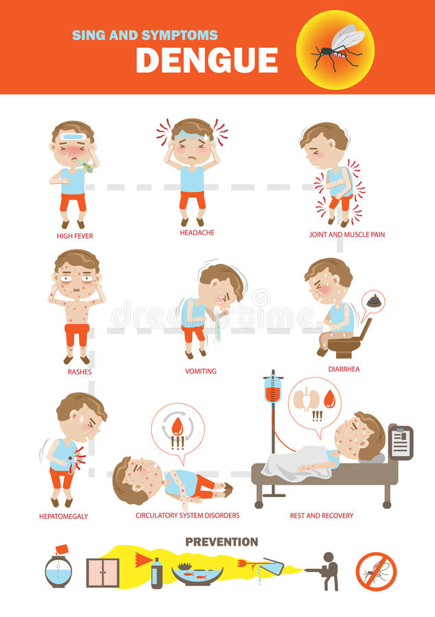 dengue libre illustration
