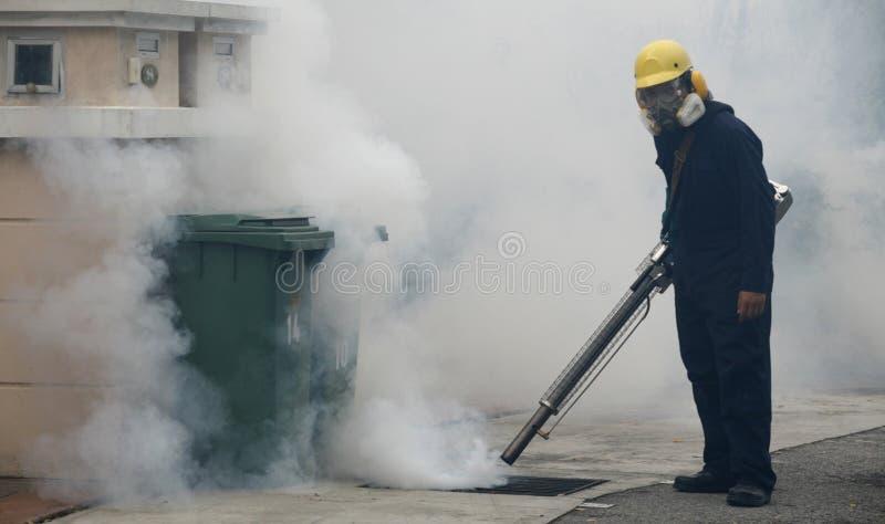 Dengue stock photo