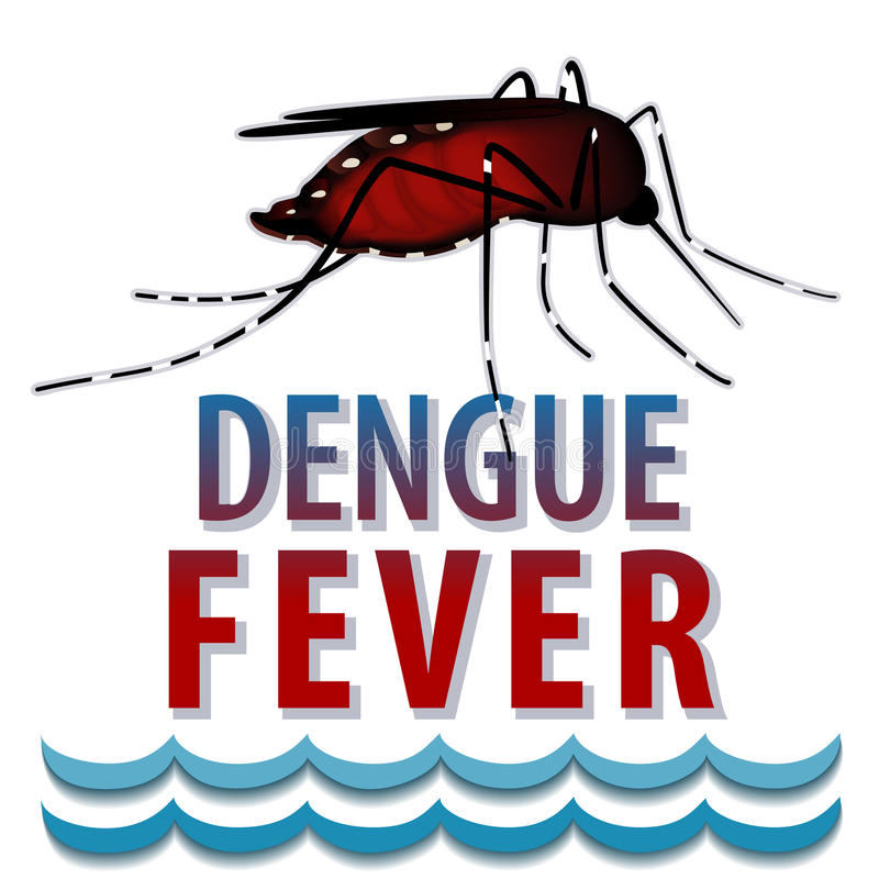 Dengue Fever Mosquito, Standing Water Stock Vector