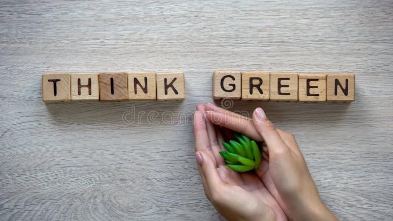 Denk groene die uitdrukking van kubussen, de installatie van de vrouwenholding in handen wordt gemaakt, broeikasgassen stock afbeeldingen