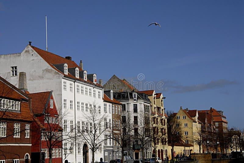 DENMARK_FIRST春日在哥本哈根 免版税库存图片