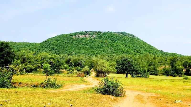Denna är mycket en mycket härlig härlig grön en kulle arkivbilder