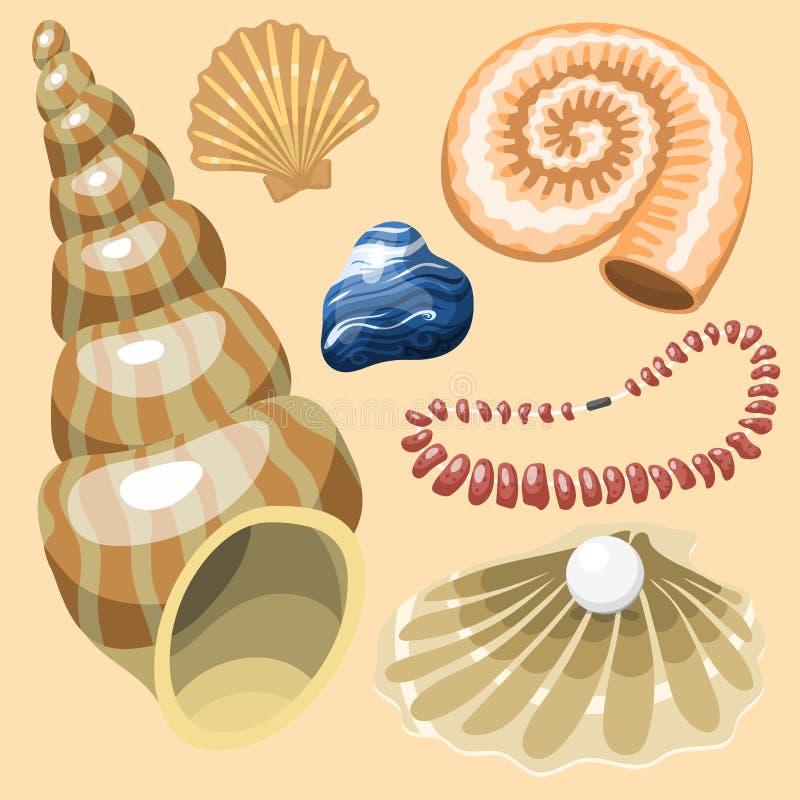 Denna morskich zwierząt i skorup pamiątek kreskówki ilustraci wektorowej spirali mollusk mussel tropikalna dekoracja ilustracja wektor