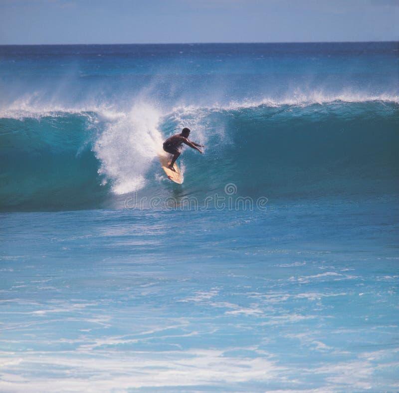 denna surf obrazy stock