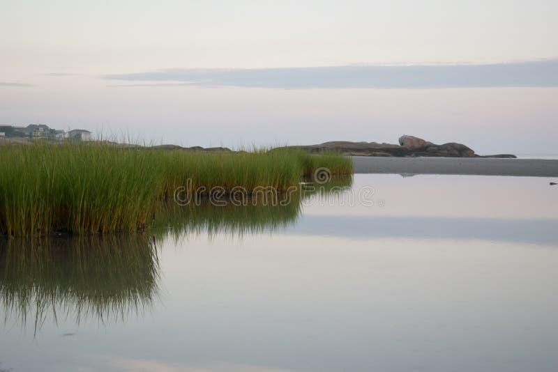 Denna trawa na Wingaersheek plaży w Gloucster zdjęcia stock
