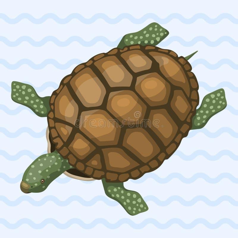 Dennego żółwia kreskówki przyrody oceanu zwierzęcej dennej zieleni pływania gada wektoru podwodna ilustracja royalty ilustracja