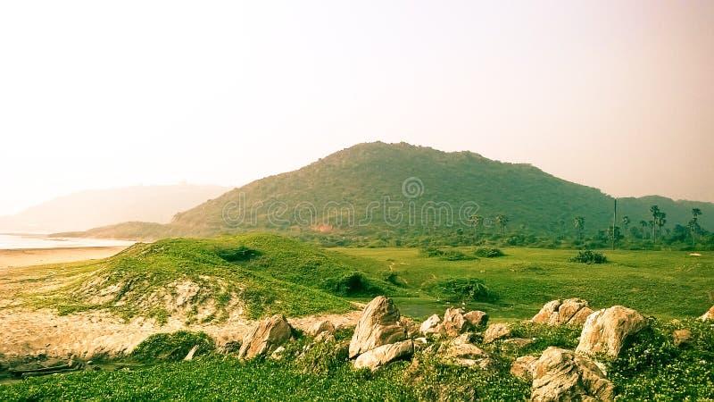 Dennego brzeg zieleni krajobraz zdjęcie stock