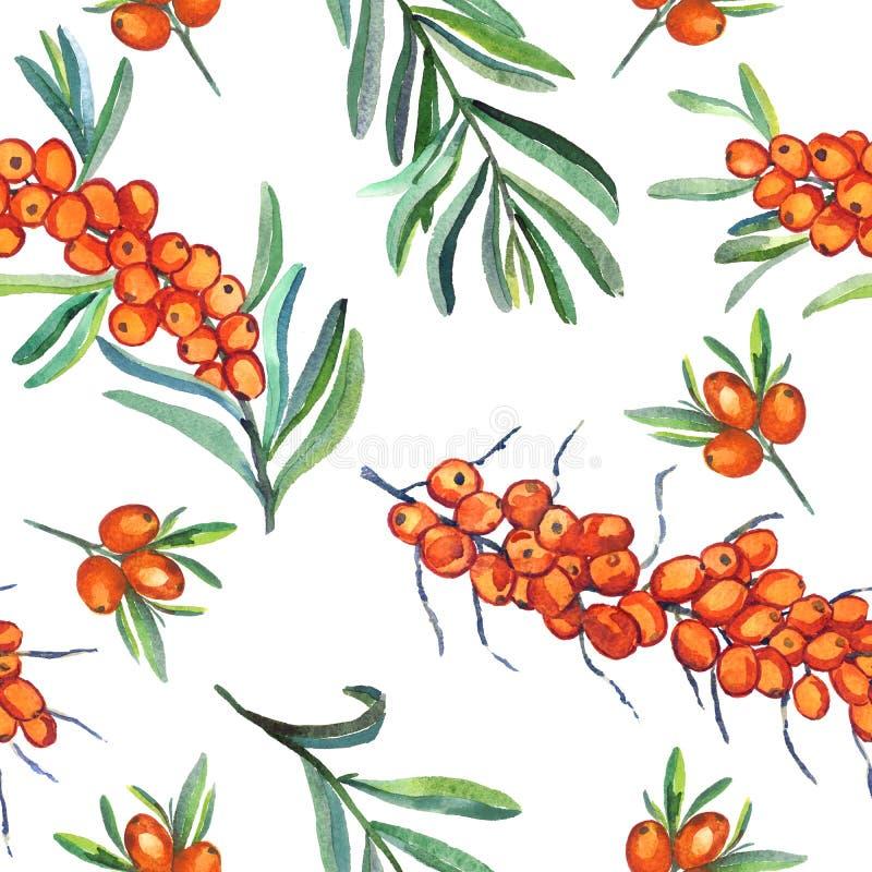 Dennego buckthorn gałąź z dojrzałymi jagodami, jagodami i liśćmi, bezszwowy deseniowy projekt na białym tle ilustracja wektor