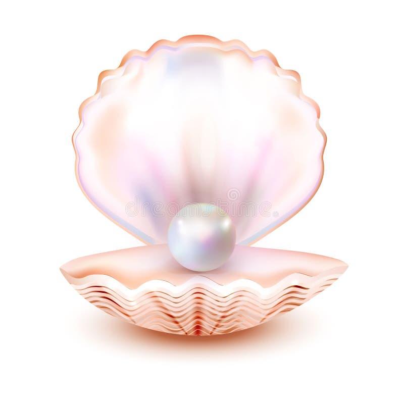 Dennej skorupy realistyczna ikona odizolowywająca na białym tle Matka perła, ostryga, milczek Świetna ilość również zwrócić corel royalty ilustracja