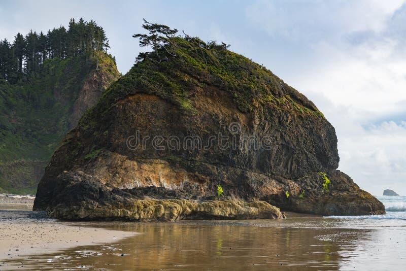 Dennej sterty rockowa formacja nakrywająca z zieloną roślinnością i falezami nad piaskowata plaża gnarled sosny, wysokich i zales obraz royalty free