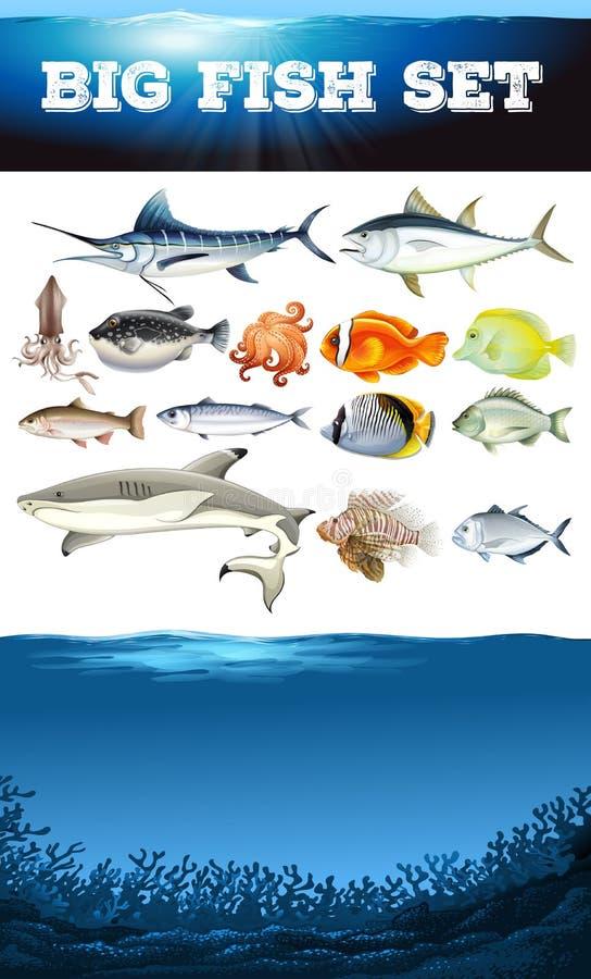 Denni zwierzęta i ocean scena ilustracji