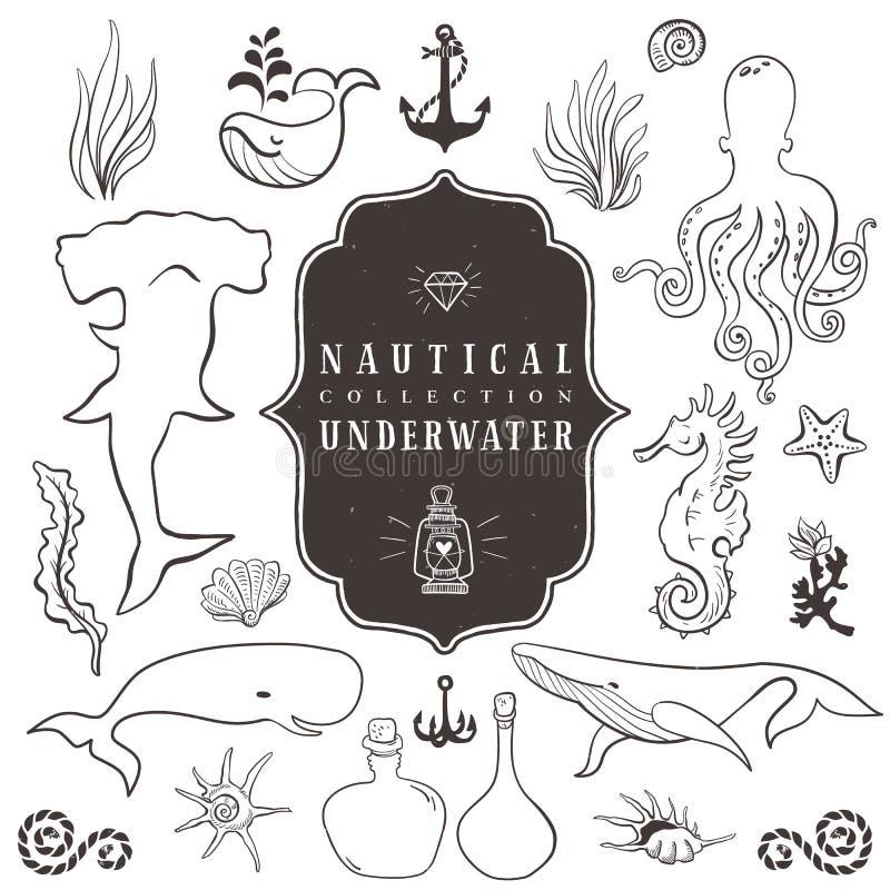 Denny życie, morscy zwierzęta Roczników ręka rysujący elementy royalty ilustracja