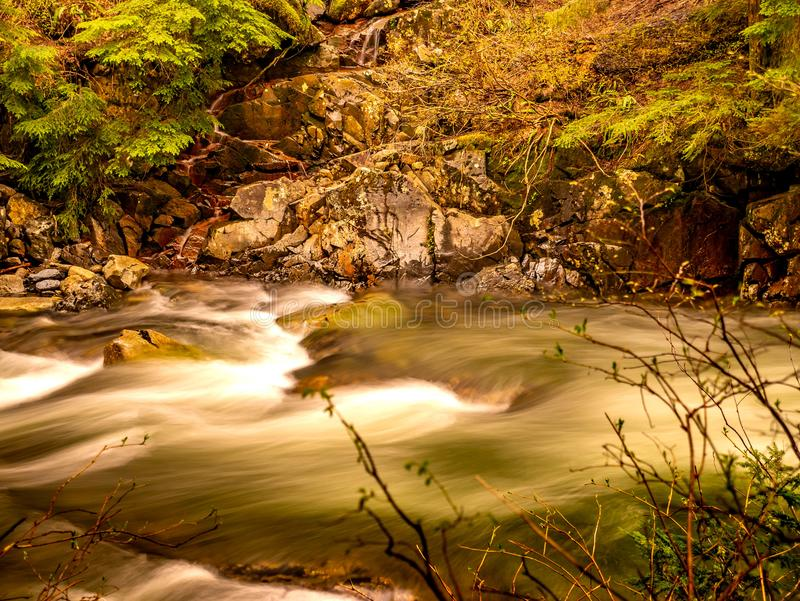 Denny Creek Right Outside Denny Creek Campground em Washington State imagem de stock royalty free