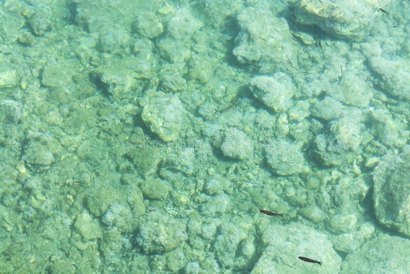 Denny dno z małymi kamieni otoczakami w krysztale - jasna woda dla abstrakcjonistycznego tła Odgórny widok zdjęcie stock