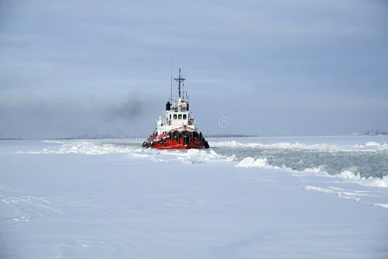 Denny holownik w zimie zdjęcie stock