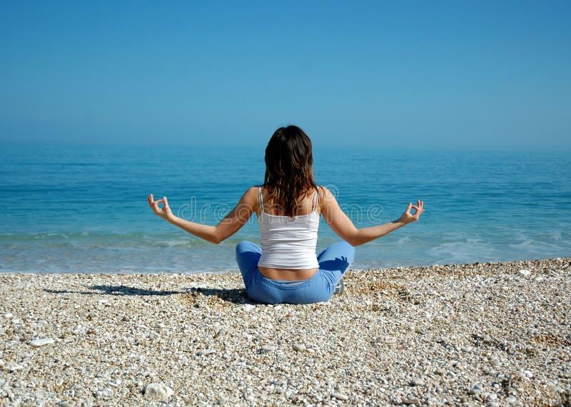 denny jogi obrazy royalty free