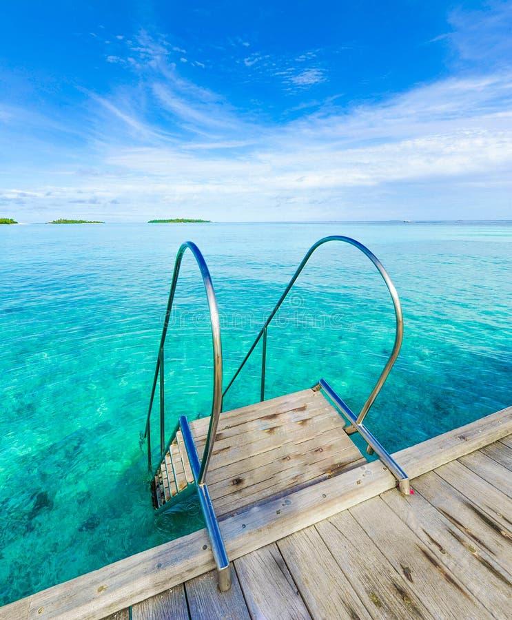 Denny pływacki basen obrazy royalty free