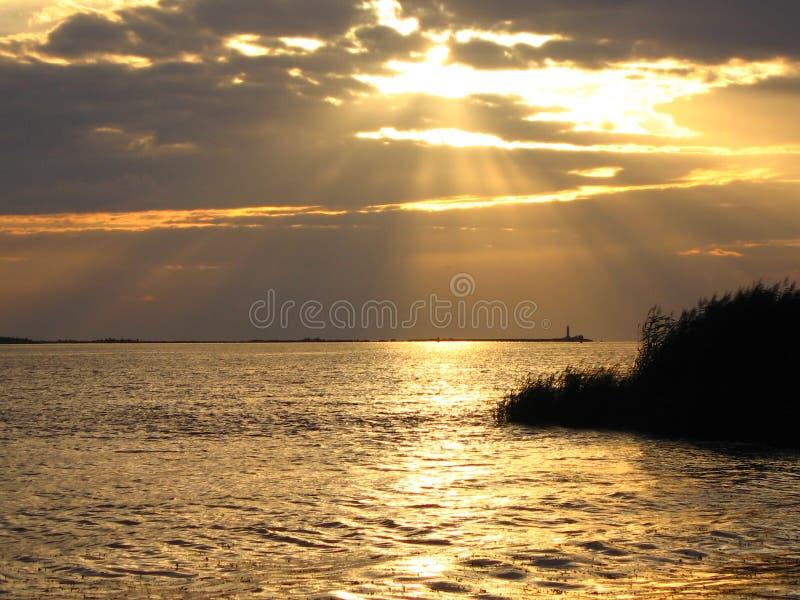 denny słońca fotografia royalty free