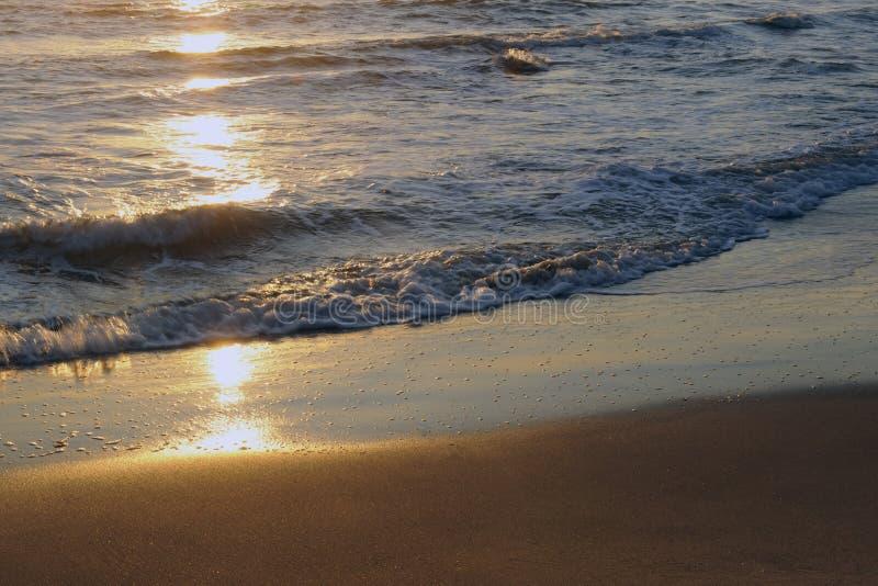 denny słońce fotografia stock