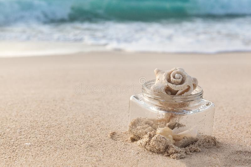 Denny Shell W Szklanym słoju Na plaży Z piaskiem I oceanie Jako b zdjęcie stock