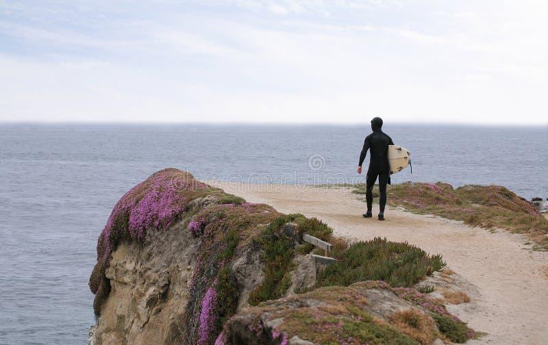 denny surfera obrazy stock