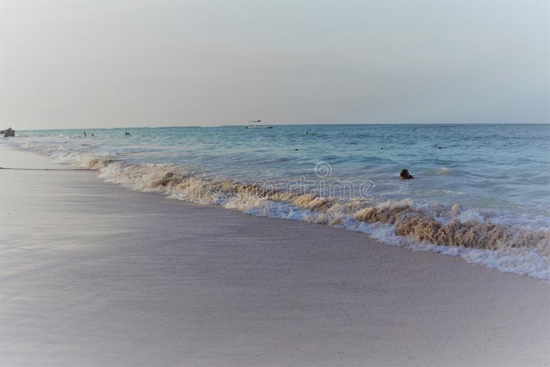 Denny widok od piaskowatego brzeg, ludzie pływa w oceanie przy zmierzchem zdjęcie royalty free