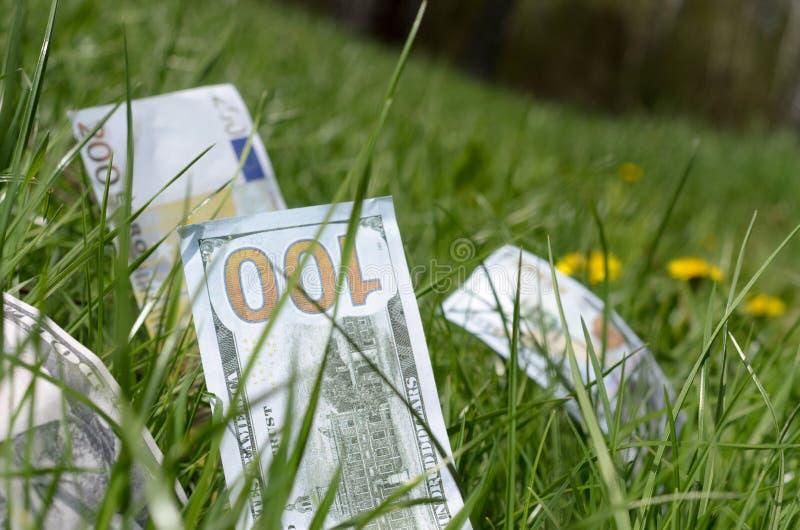 Denominações dos dólares e dos euro na grama verde fotos de stock royalty free