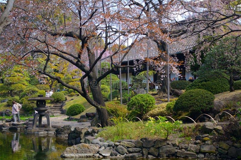 Denpo-dans dans Asakusa, Tokyo, Japon photographie stock