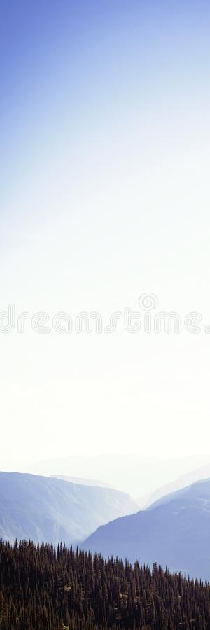 Dense forest cover over rocky mountains. Dense forest covered over rocky mountains at daytime royalty free stock photo