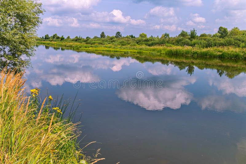 Dense picturesque banks of the river in which reflecting clouds float. For your design royalty free stock images