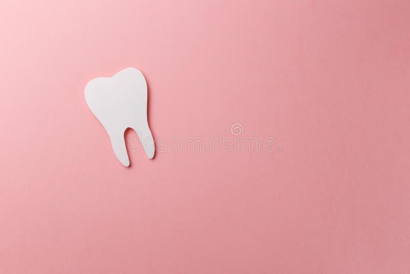Dent blanche sur le fond rose avec l'espace de copie photos libres de droits
