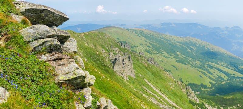 Dent d'arête de montagne avec les affleurements rocheux dans Mountai carpathien photo stock
