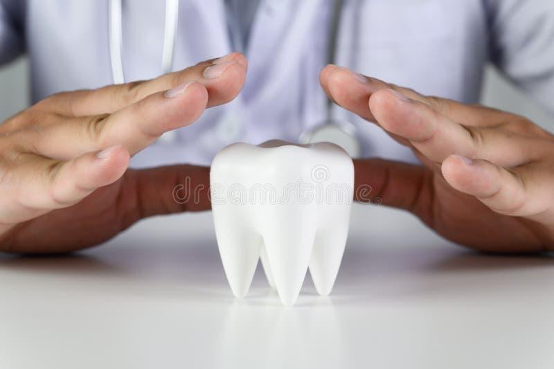 Dent dentaire d'hygi?ne et d'?ducation, sant?, concept d'art dentaire photographie stock libre de droits